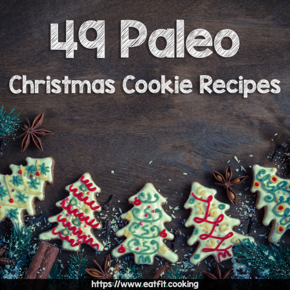 paleo-christmas-cookie-main-image-1000