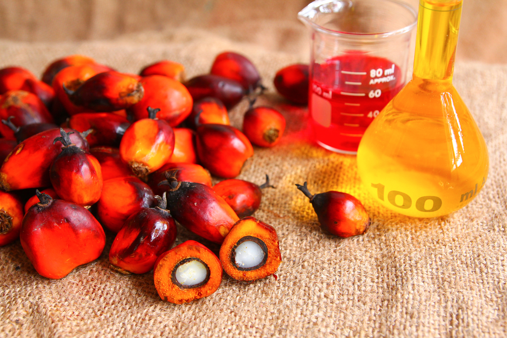 palm-oil cooking oil comparison